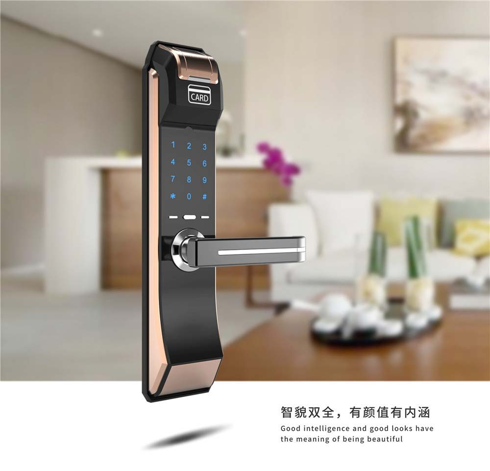 C6 Bronzed Smart intelligent password card fingerprint door locks
